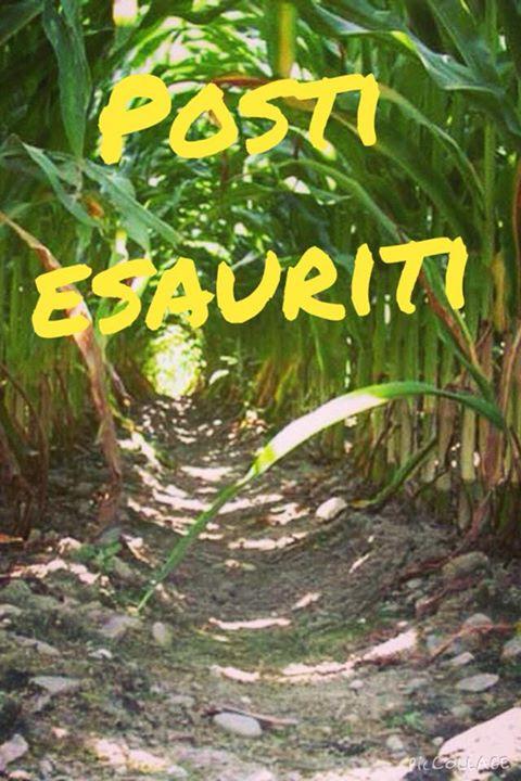Un labirinto e tanti bambini a alfonsine 13 06 2015 for Labirinto alfonsine