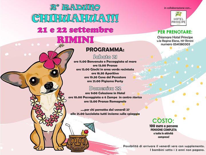 Modena Dog Calendario 2020.Index Of Uploads Immagine 2019 07